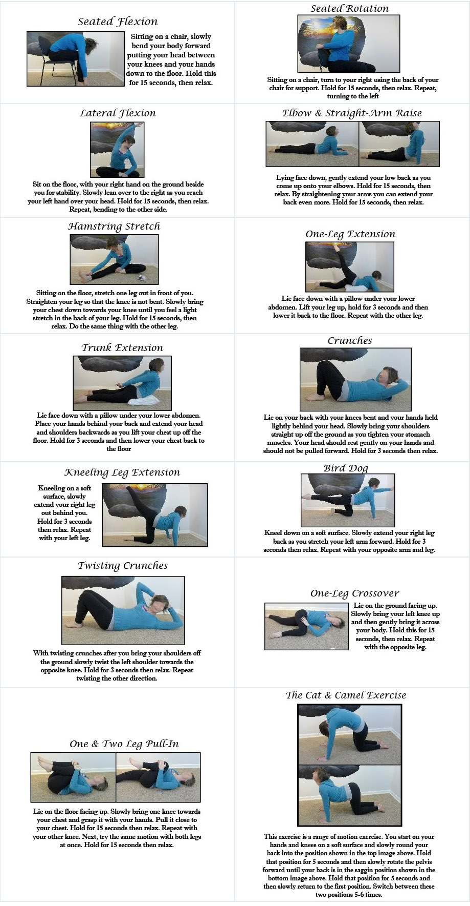 Low Back Patient Stretch and Exercise Guide